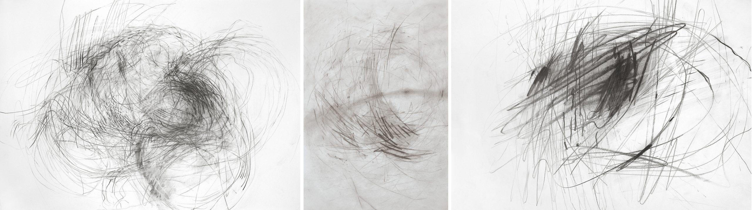 70 x100 cm, kohlestift/karton, 70 x 50 cm, kohle/papier, 50 x 70 cm, grafit/papier